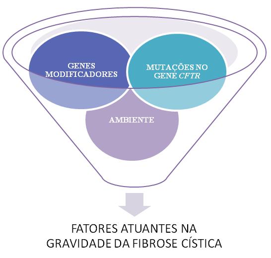 Fatores atuantes na gravidade clínica da fibrose cística.
