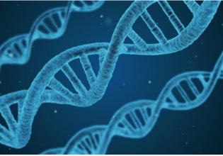 Entendendo termos da Fibrose Cística: genética, autossômica e recessiva