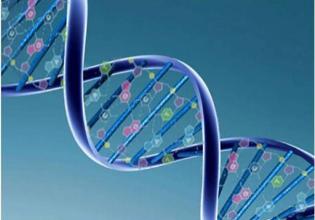 Aspectos genéticos e fenotípicos da Fibrose Cística: uma revisão crítica da literatura