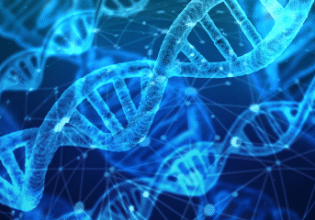 Perfil das mutações de pacientes com fibrose cística no estado de Santa Catarina